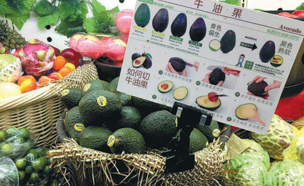 """avocado mexico japon The avocado, also called 'alligator pear', is a fruit from mexico and central america avocado in china is called niu you guo, literally """"butter fruit"""" for."""