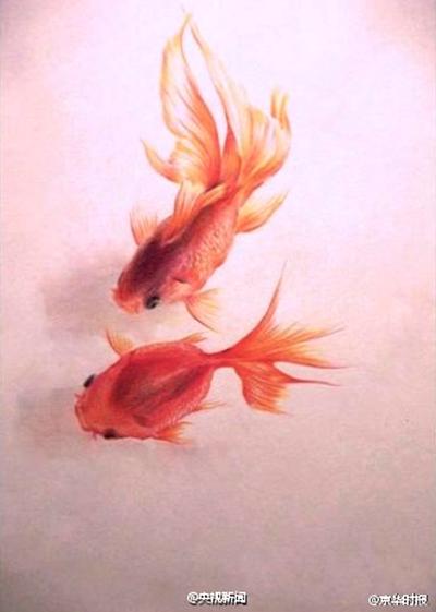 Un joven pinta peces muy realistas con lpices de colores 6