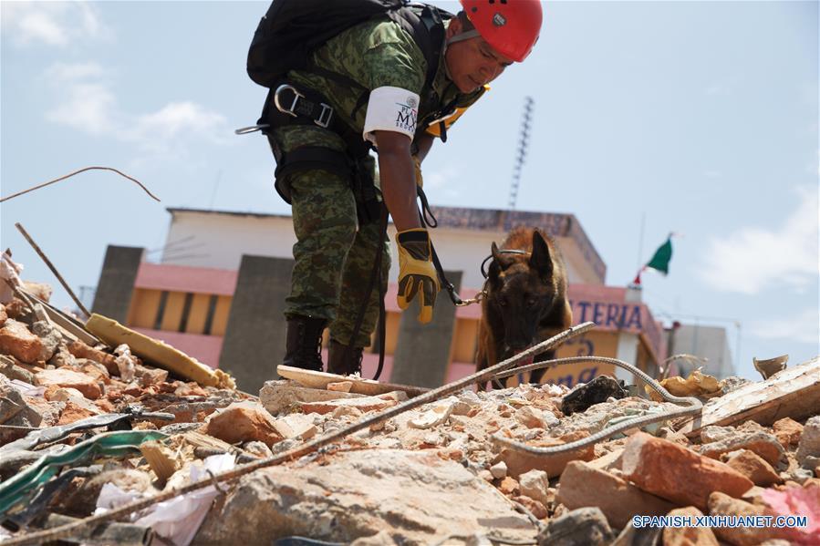 Ayuda Natural Disasters
