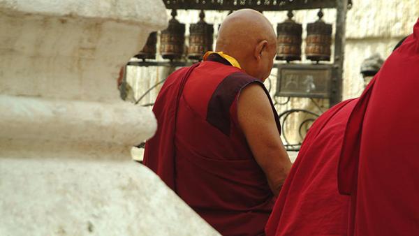 ¡Desgarrador! Leopardo mató a un monje mientras meditaba en India