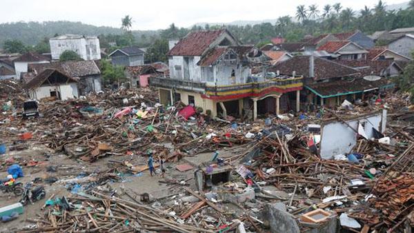Indonesia: Ayudan a regresar al mar a tortugas varadas por el tsunami