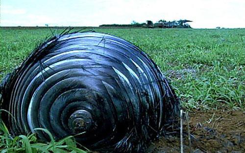 Un oggetto volante non identificato è precipitato in una fattoria brasiliana. 1
