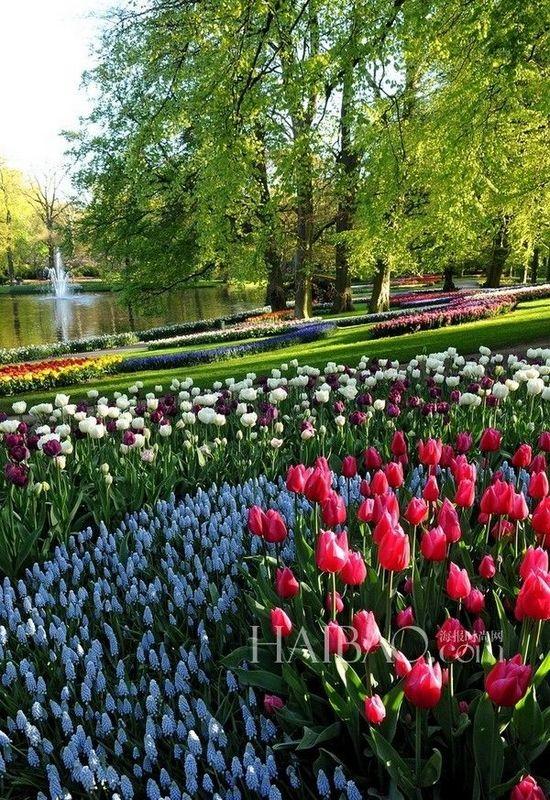 Nueve jardines m s bonitos del mundo 5 for Jardines bonitos y sencillos