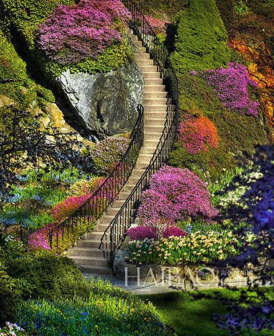 Nueve jardines m s bonitos del mundo 2 for Jardines bellos fotos